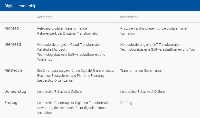 Wochenplan Digital Leadership Deutsch