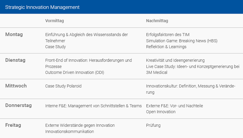 Wochenplan Strategic Innovation Management Deutsch