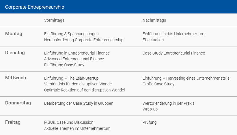 Wochenplan Corporate Entrepreneurship Deutsch