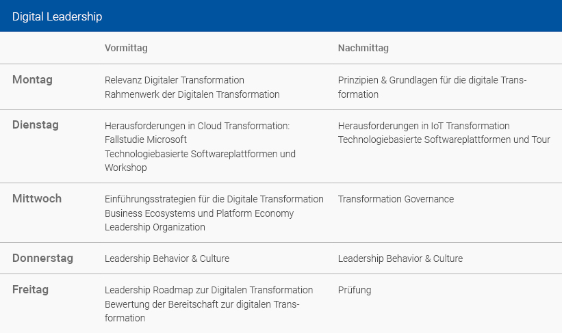 Wochenplan Digital Leadership Deutsch