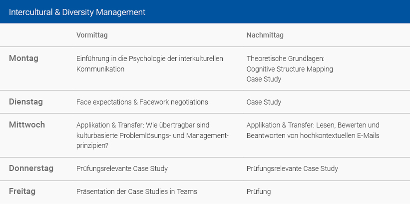 Wochenplan Intercultural & Diversity Management Deutsch
