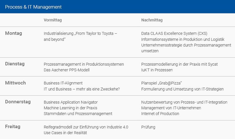 Wochenplan Process & IT Management Deutsch