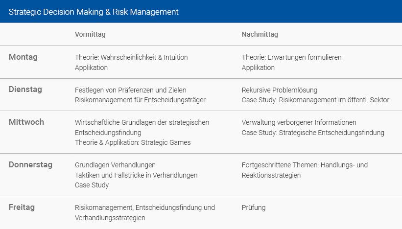 Wochenplan Strategic Decision Making & Risk Management Deutsch