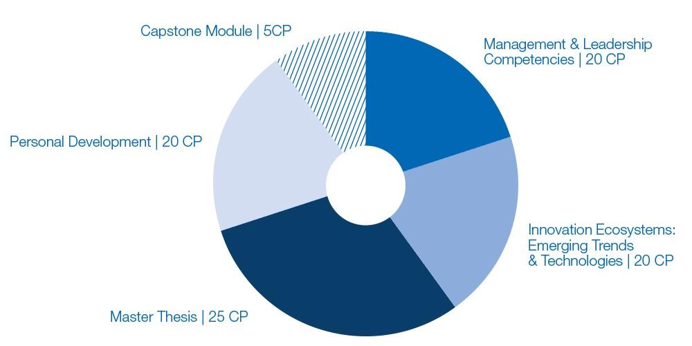 Grafik Programmbestandteile Executive MBA